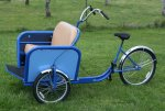Assembled and Painted Pedicab 006.jpg